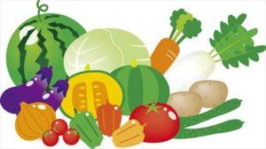 7. バランスの良い食事を心がける