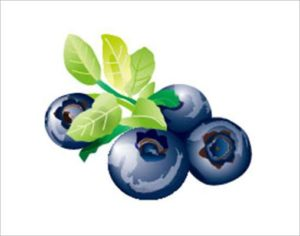 目を良くする代表的な栄養素