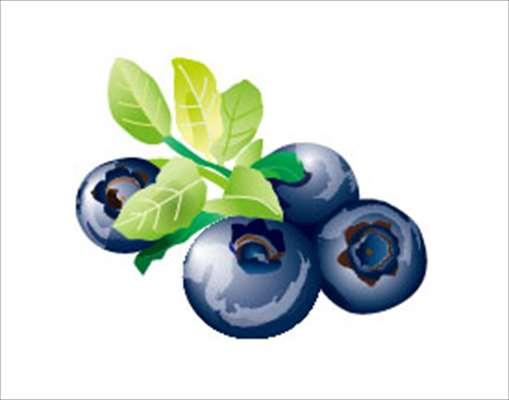 疲れ目に効果的な栄養素や食べ物